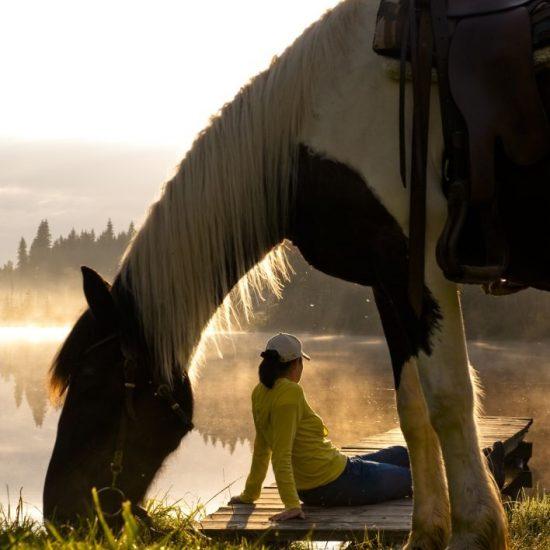 Kurze Auszeit mit eigenem Pferd
